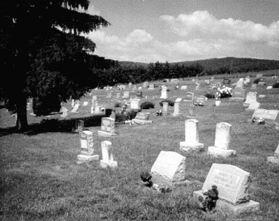 View from the rear of the cemetery