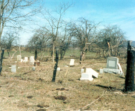 Holman's Creek Orchard Cemetery, as it appeared in 1987